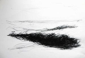 Journans, 2014, 40x50, fusain, Christine Lévy-Rostagnatok