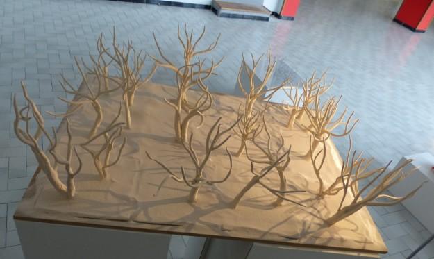 P1570629 - arbres